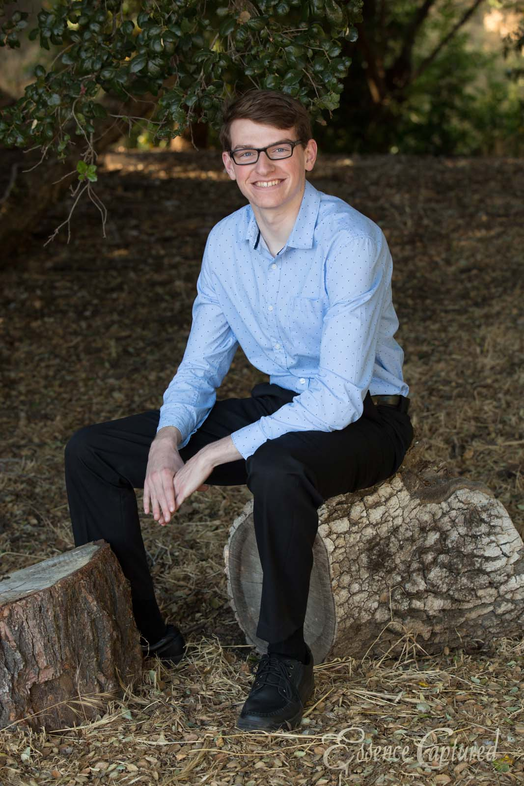 high school senior portrait male with glasses sitting on log in oak forest