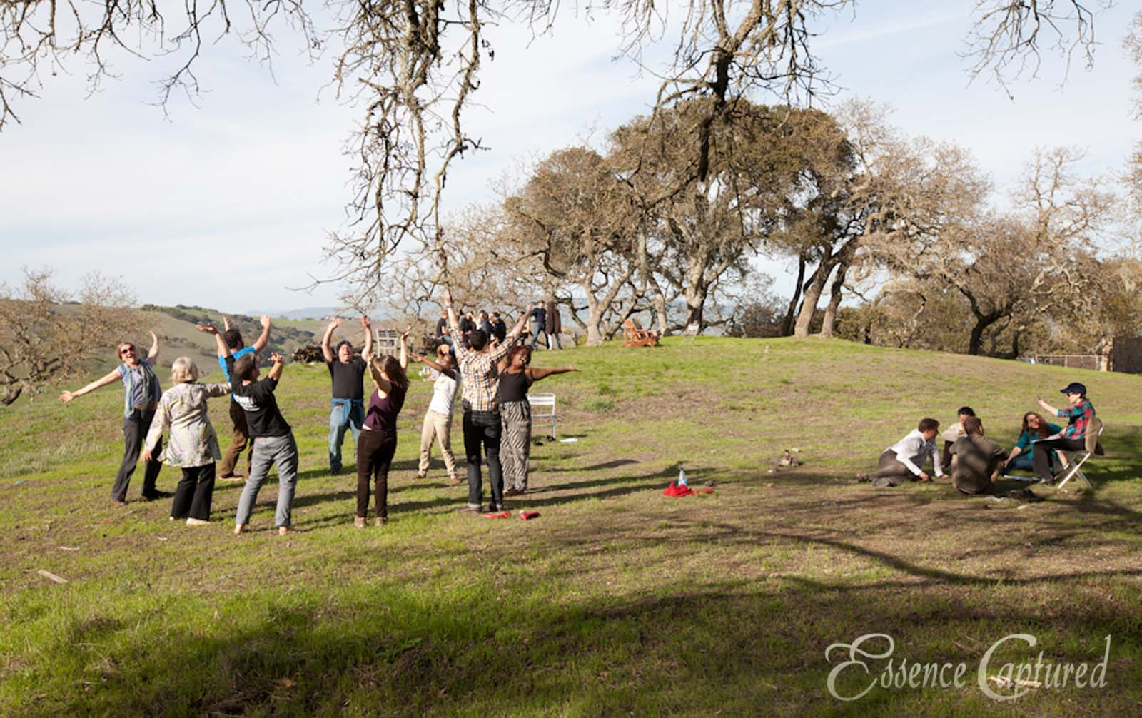 people participating in retreat activities outdoors at Earthrise Petalumn