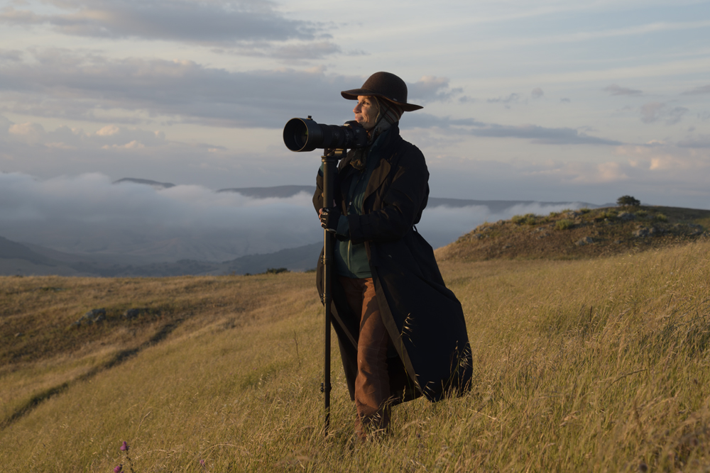 woman in long coat and hat standing on hillside at sunset, holding camera