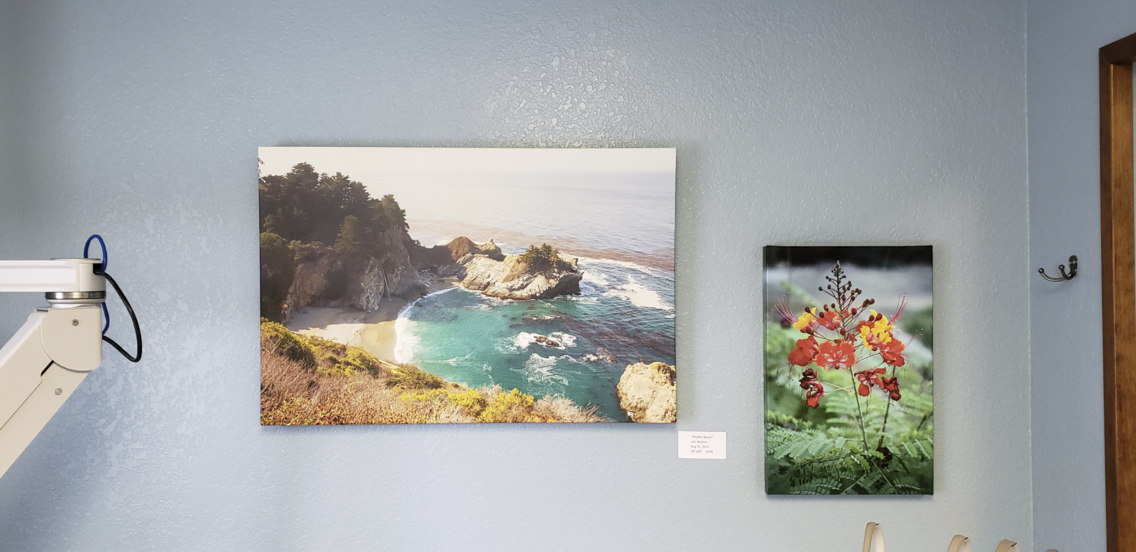 Los Osos Family Dentistry Ongoing Exhibit Art for Sale