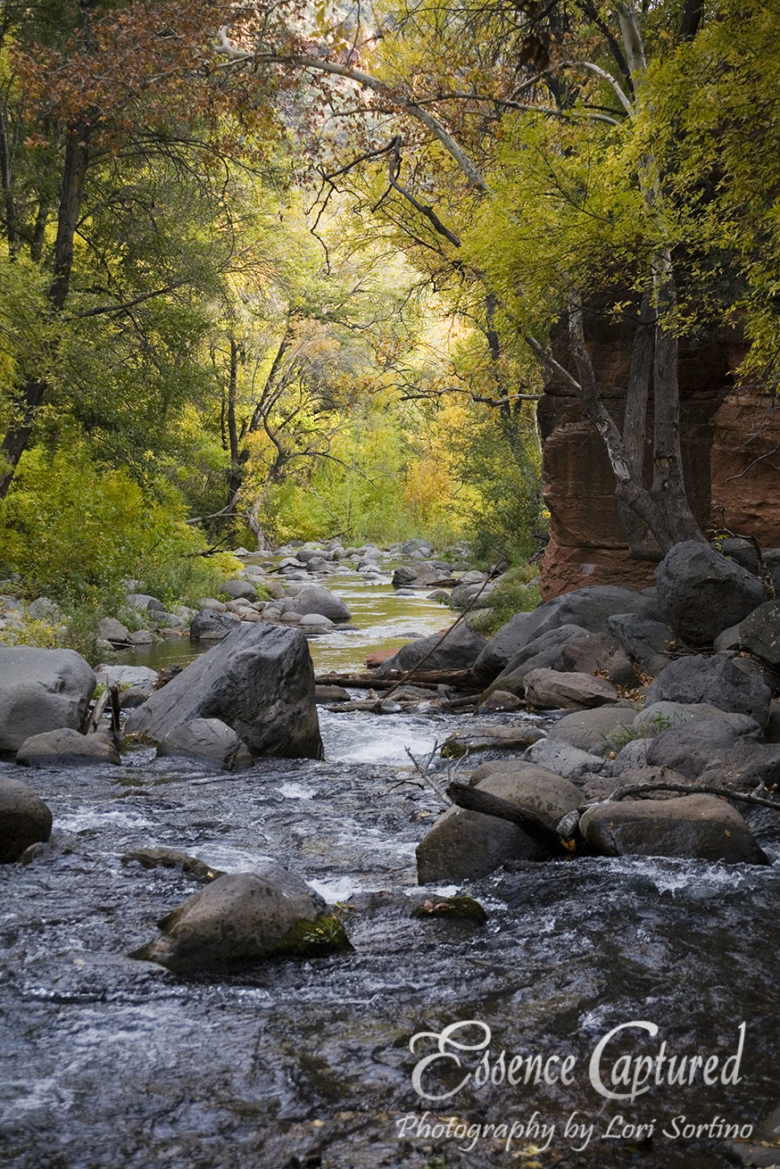 Oak Creek Canyon, AZ